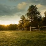 A picture of a beautiful sunrise on a British Columbia ranch for sale