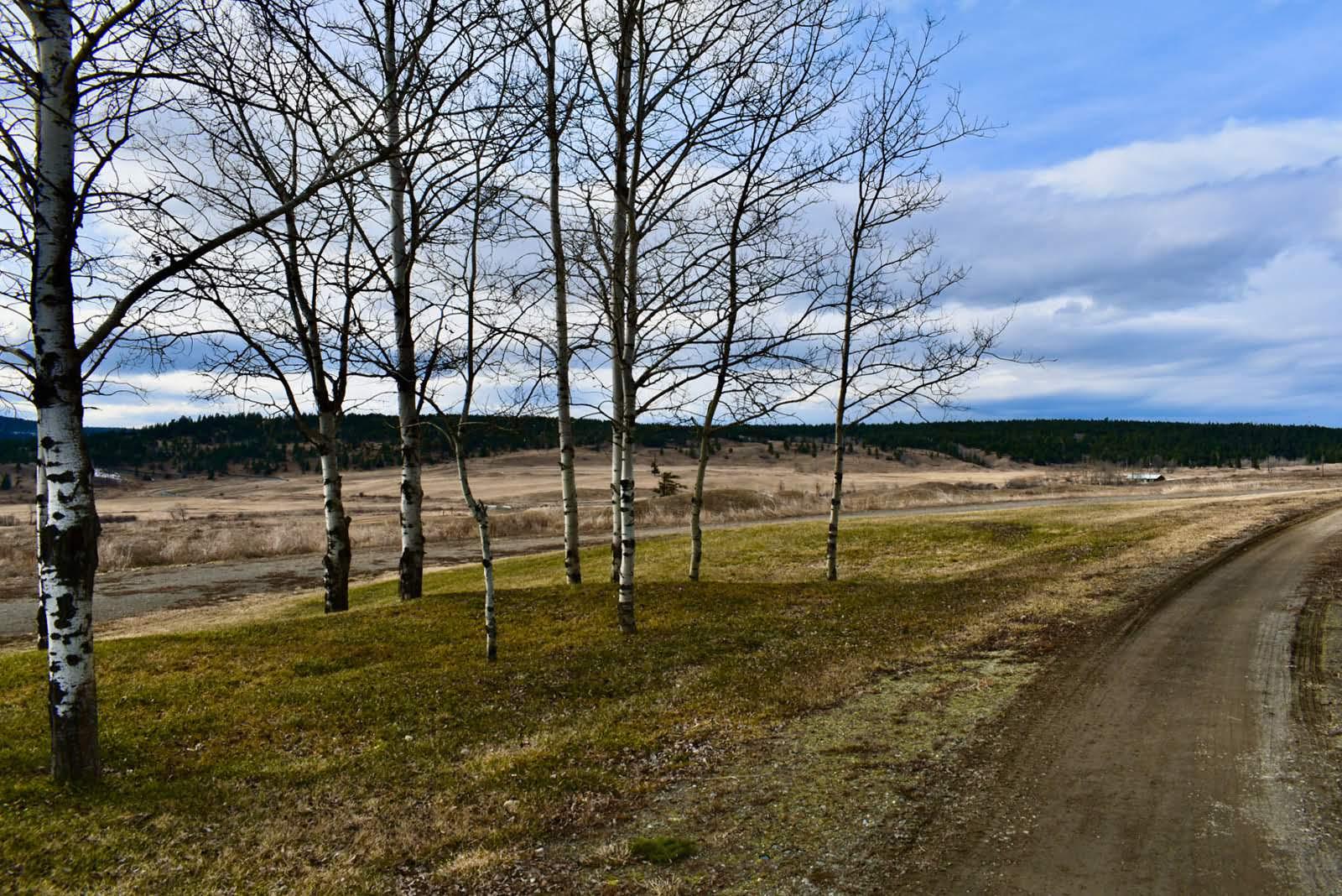 3260 Cariboo Highway 97- 150 Mile House, Cariboo, British Columbia    - Photo 15 - RP7793145103