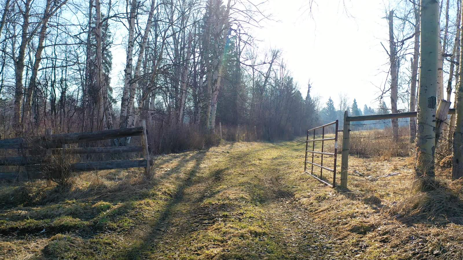 2765 Denicola Crescent, Prince George, British Columbia    - Photo 14 - RP1629034522