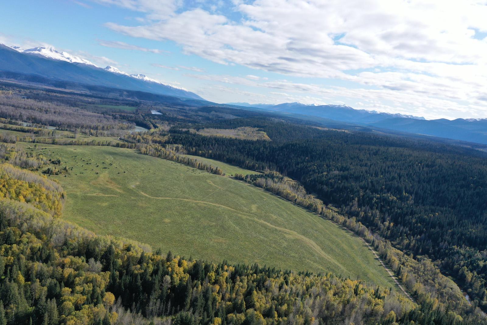 10272 Loos Road, Robson Valley, British Columbia    - Photo 5 - RP2991052941